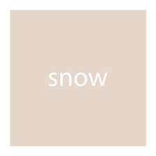 aterra Parkett snow Fahne
